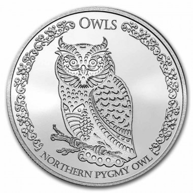 Moneda de Plata Búho Pigmeo del Norte 2021 1 oz